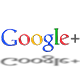 google + und google local